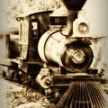 Train Keeps A Rolling by Bill Cannon