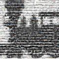 Train Mosaic by Paul Van Scott