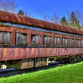 Train No. 91 by David Patterson