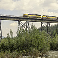 Train On Trestle by Phyllis Taylor