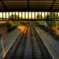 Train Station by Svetlana Sewell