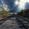 Train Track Junction In Charleston Sc by Dale Powell