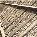 Train Tracks Sepia Triangular  by James BO Insogna