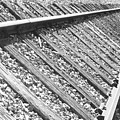 Train Tracks Triangular In Black And White by James BO  Insogna