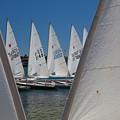 Training Sailboats Newport Beach by Cliff Wassmann