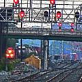 Trains Go Here by Ian  MacDonald