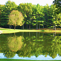Tranquil Landscape At A Lake 2 by Jeelan Clark