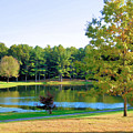 Tranquil Landscape At A Lake 6 by Jeelan Clark