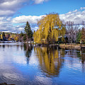 Tranquil Reflection On The Deschutes by Lynn Bauer