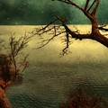 Tranquillity Bay by RC DeWinter