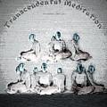 Transcendental Meditation by Lance Sheridan-Peel
