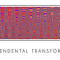 Transcendental Transformation by Steven Kelly Smith