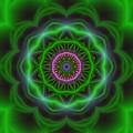 Transition Flower 10 Beats by Robert Thalmeier