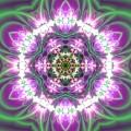 Transition Flower 6 Beats 3 by Robert Thalmeier