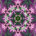 Transition Flower 6 Beats 4 by Robert Thalmeier