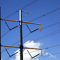 Transmission Lines by Iris Posner