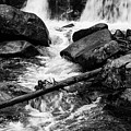 Trap Falls In Ashby Ma Black And White 9 by Michael Saunders