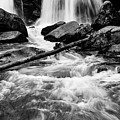 Trap Falls In Ashby Ma Black And White 1 by Michael Saunders