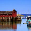 Trap House At Head Of Harbor by John Kenealy