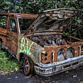 Trashed Car Maui Hawaii by Edward Fielding