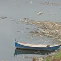 Trashy River by Anita Goel