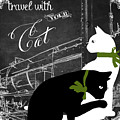 Travel With Your Cat by Mindy Sommers