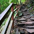 Treacherous Hike by Kristin Elmquist