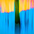 Tree Abstract by  Onyonet  Photo Studios