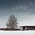 Tree And A Barn by Jukka Heinovirta