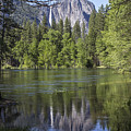 Tree And Reflection Yosemite  by John McGraw