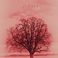 Tree Art 01 by Gull G