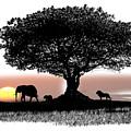 Tree Art by Carl Gouveia