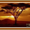 Tree At Sunset. L A With Decorative Ornate Printed Frame. by Gert J Rheeders