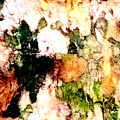 Tree Bark 1 Abstract by Ken Lerner