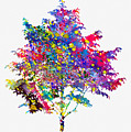 Tree-colorful by Erzebet S
