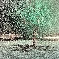 Tree In Sprinkler - Painted by Dave Beckerman