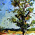 Tree In Summer Sun Mixed Media by Ginette Callaway
