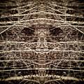 Tree Mask by Wim Lanclus
