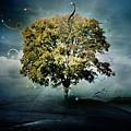 Tree Of Hope by Mary Hood