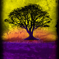 Tree Of Life - Yellow Sunburst Sky by Robert R Splashy Art