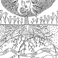 Tree Of Life by Kate Evans