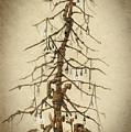 Tree Of Rust by Kirill Semenov