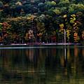 Tree Reflections by Robin Lynne Schwind