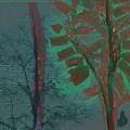 Tree Shadows At Midnight by Lenore Senior