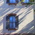 Tree Shadows On Savannah House by Carol Groenen