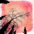 Tree Silhouettes I by Priska Wettstein
