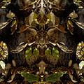 Tree Spirits by Marilynne Bull