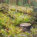 Tree Stump In Vikersund by Arild Amland