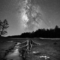 Tree Stump Milky Way Bw by Michael Ver Sprill