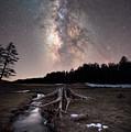 Tree Stump Milky Way  by Michael Ver Sprill